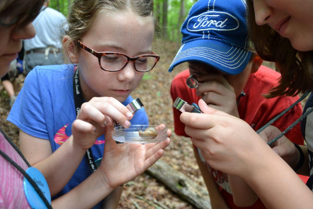 Exploring Arkansas Arkansas Audubon Society Halberg Ecology Camp