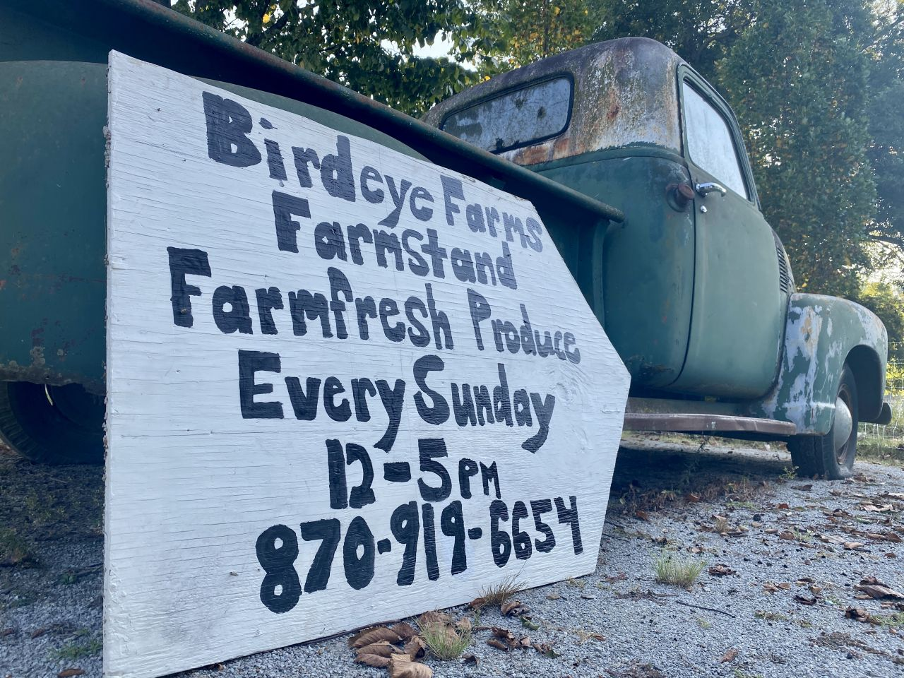 A handwritten farm stand sign leans against a forest green vintage pickup truck outside Birdeye Farms