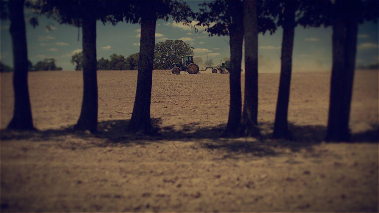 Agri Arkansas Farris Burroughs Farms