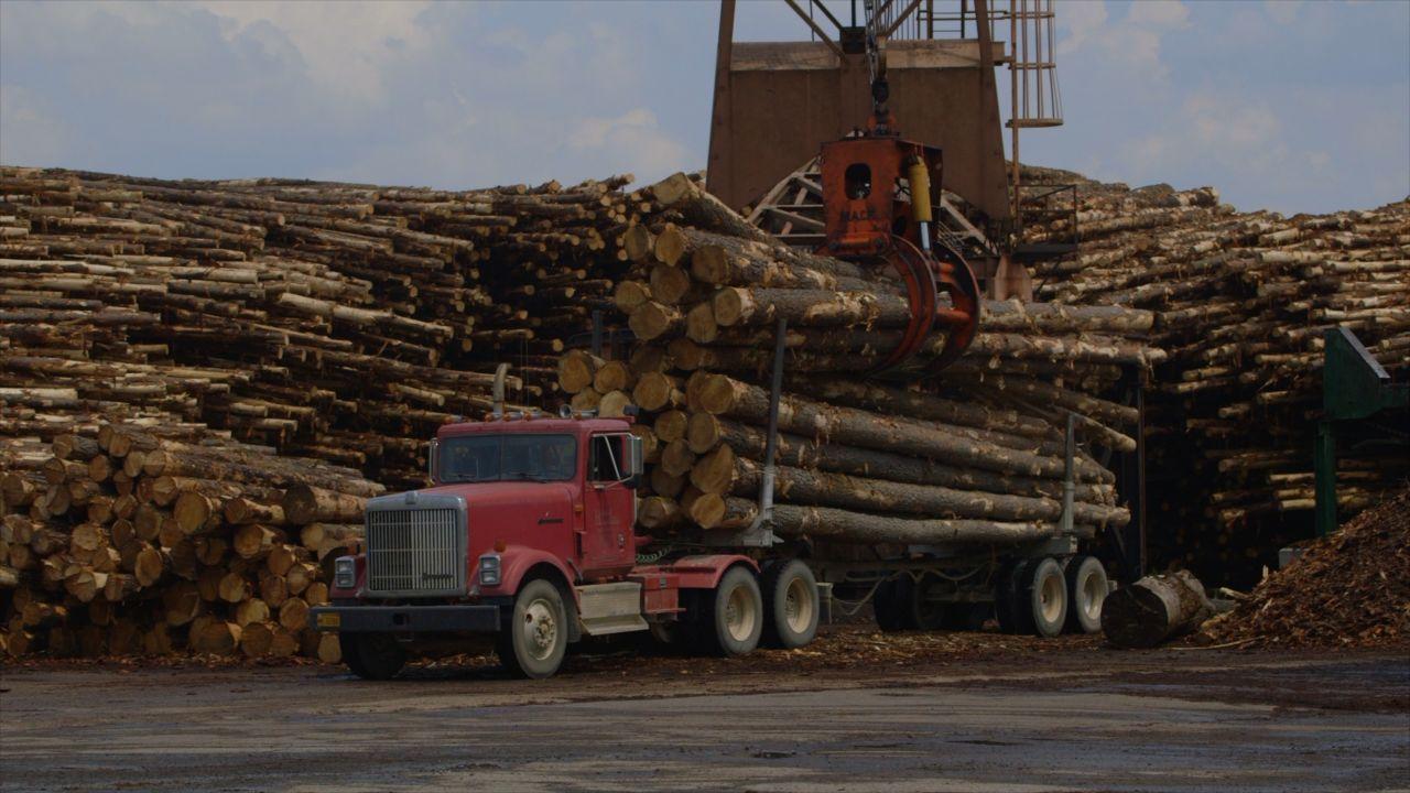 Agri Arkansas Green Bay Packaging Pinecrest Lumber Division