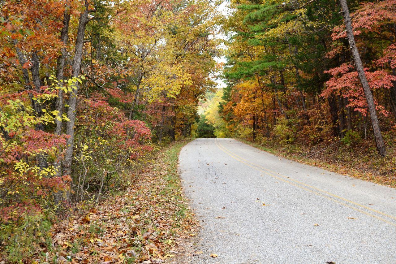 Exploring Arkansas Rockhouse Road Fall Color