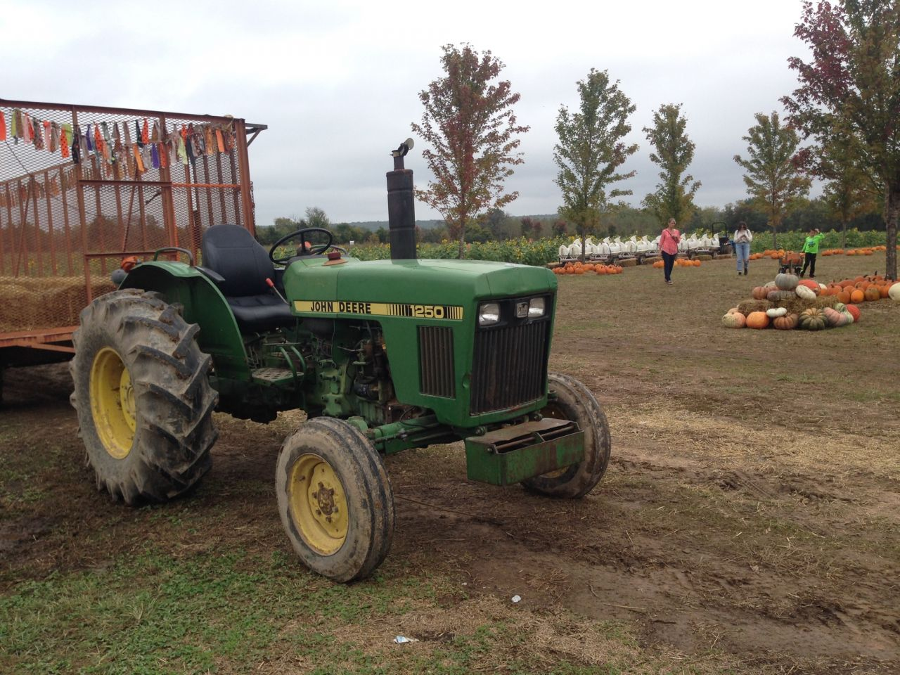 Tractor in McGarrah Patch