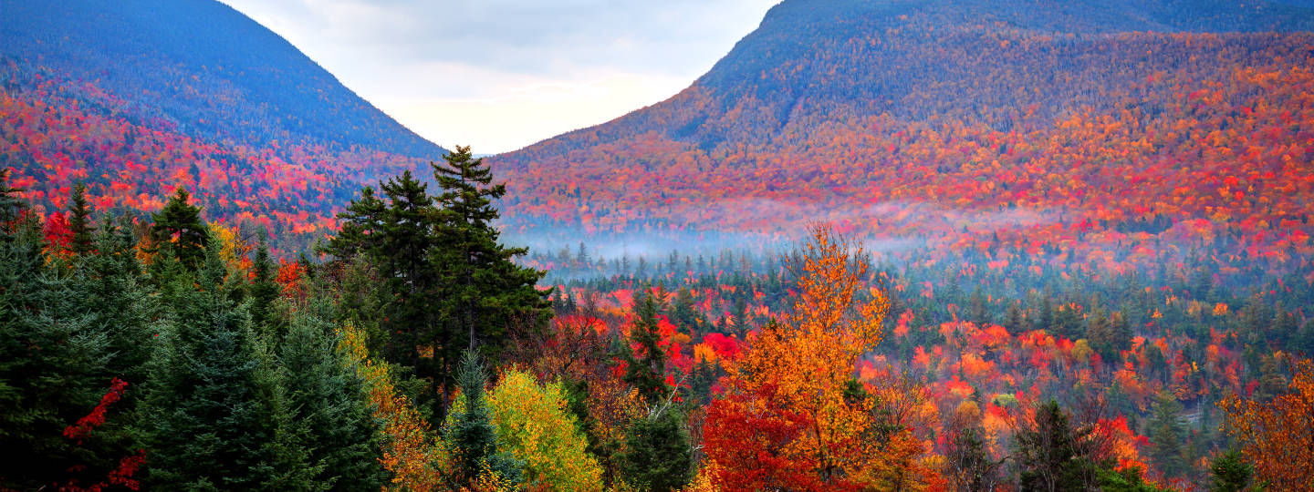 Fall landscape with mountains in background