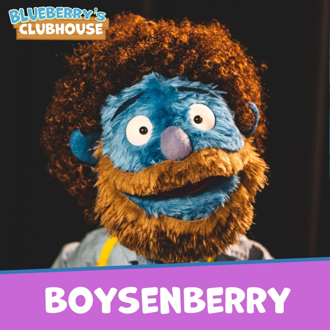 Boysenberry, with a Bob Ross-esque afro and beard, looks into the camera