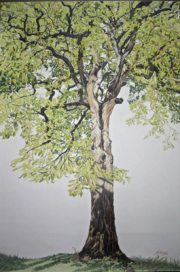 """Champion Tree: Persimmon"" by Linda W. Palmer"