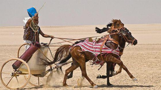 """NOVA: Building Pharaoh's Chariot"""