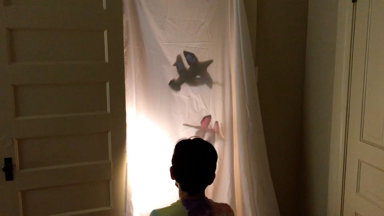 Student Tests Multiple Shadow Puppets