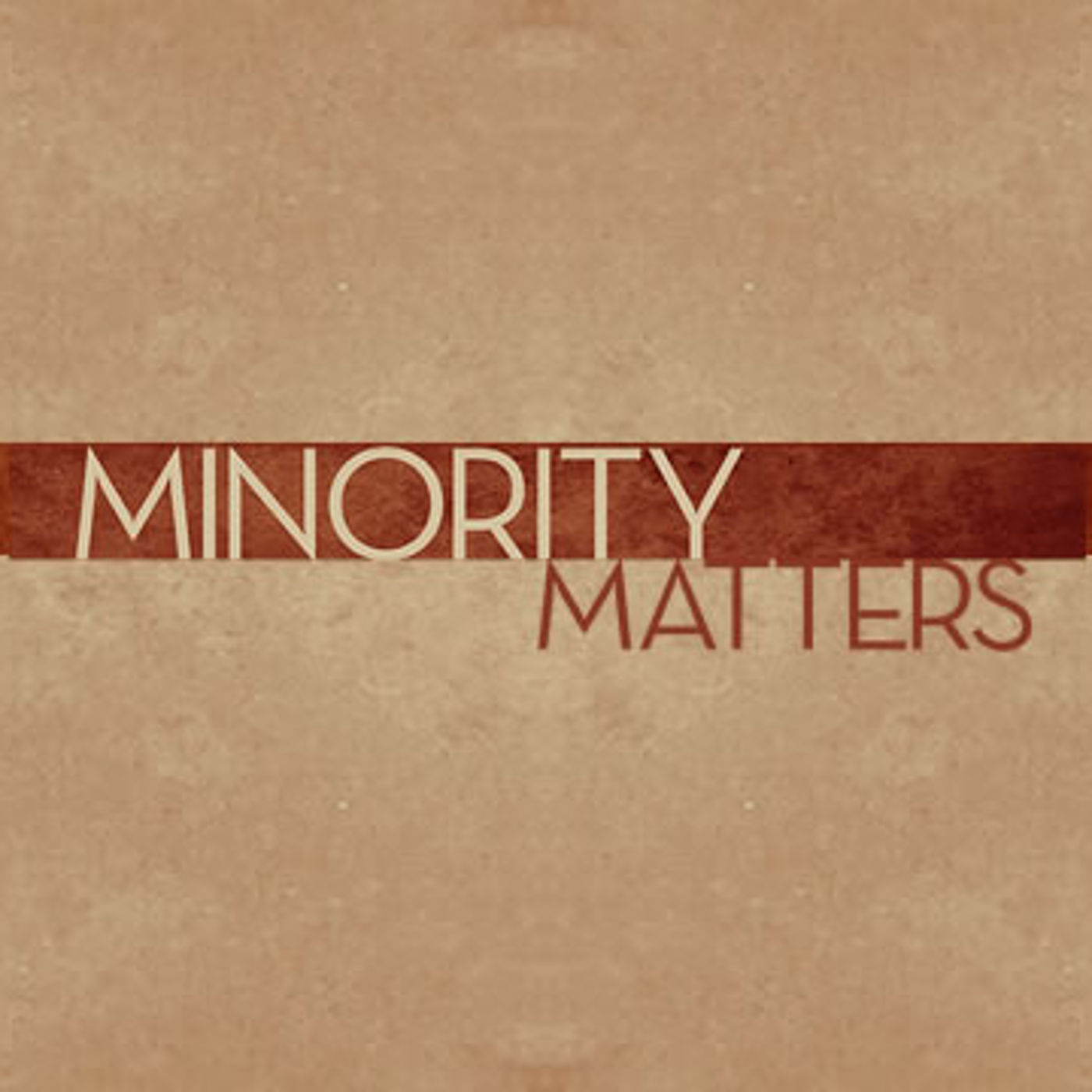 Minority Matters Graphic