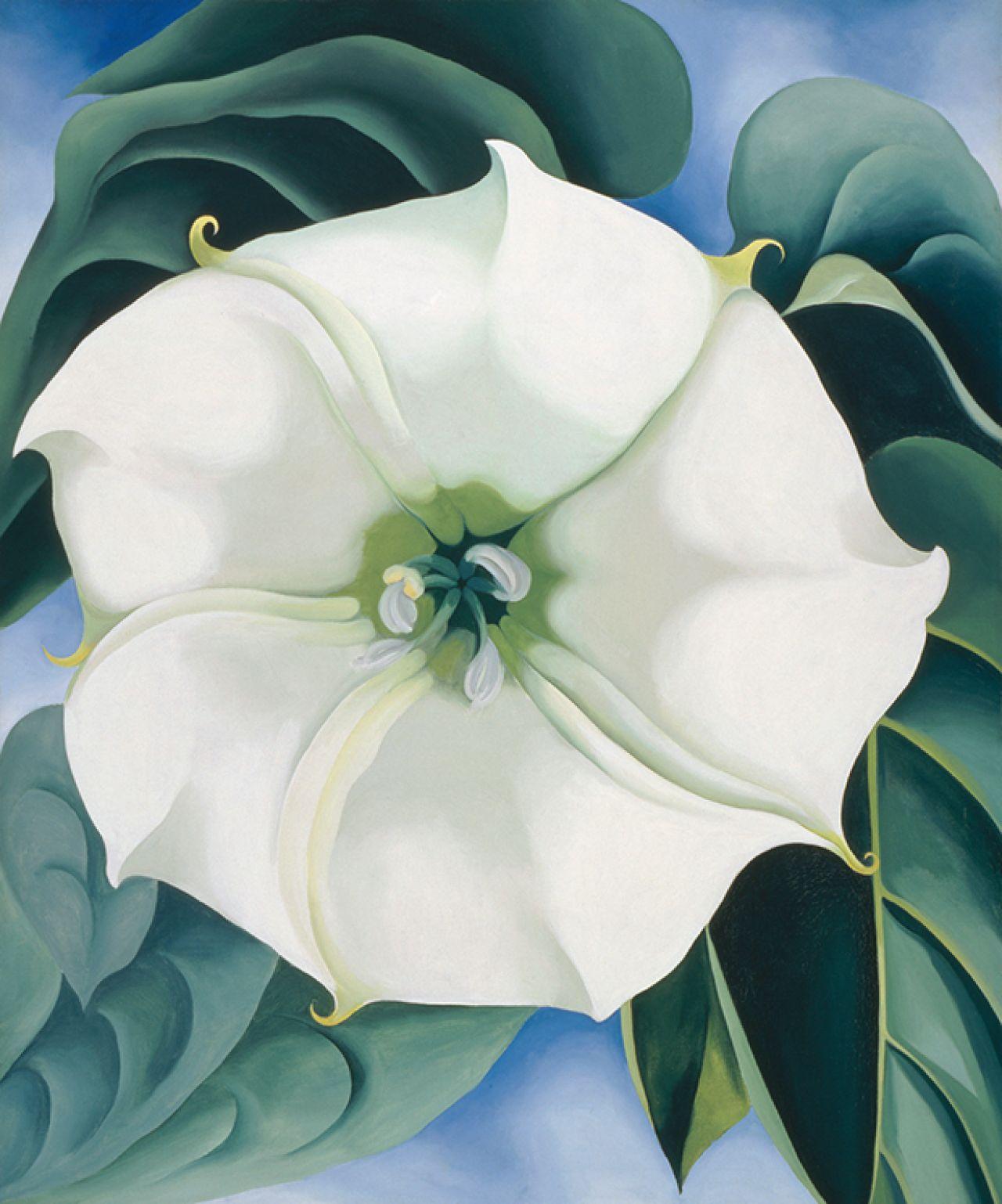 Georgia O'Keefe 'Jimson Weed/WhiteFlower No. 1'