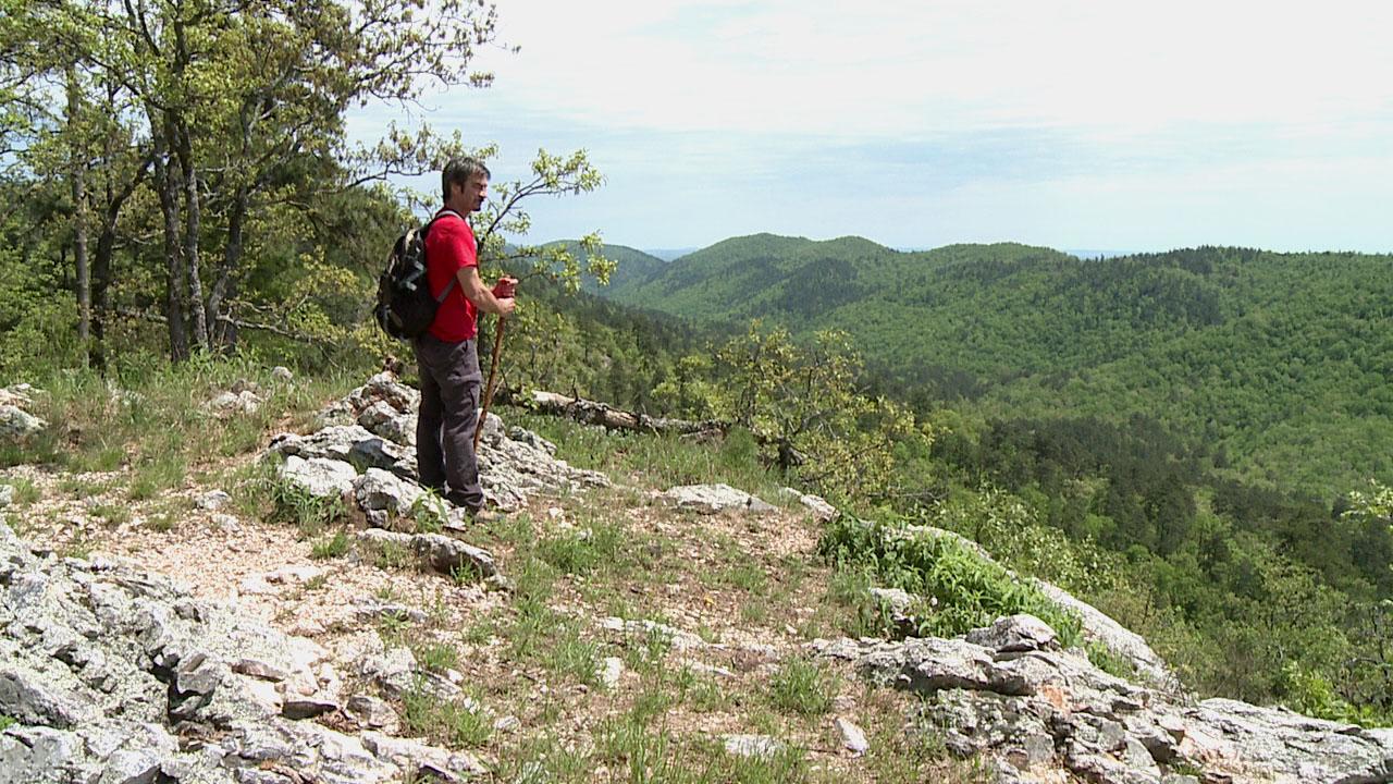 Athens-Big_Fork_Trail