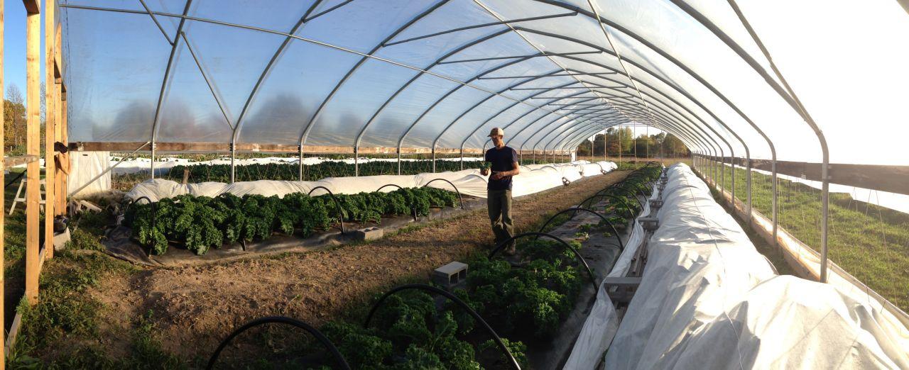 Cook With Brooks Ozark Alternatives Greenhouse