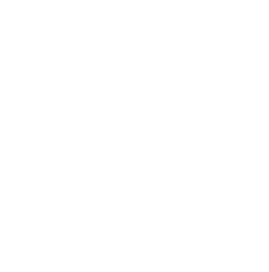 A E T N Logo